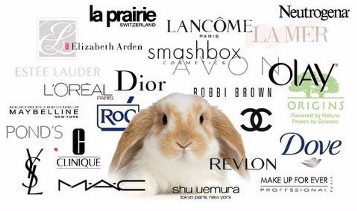 Which Makeup Companies Do Or Don't Test On Animals