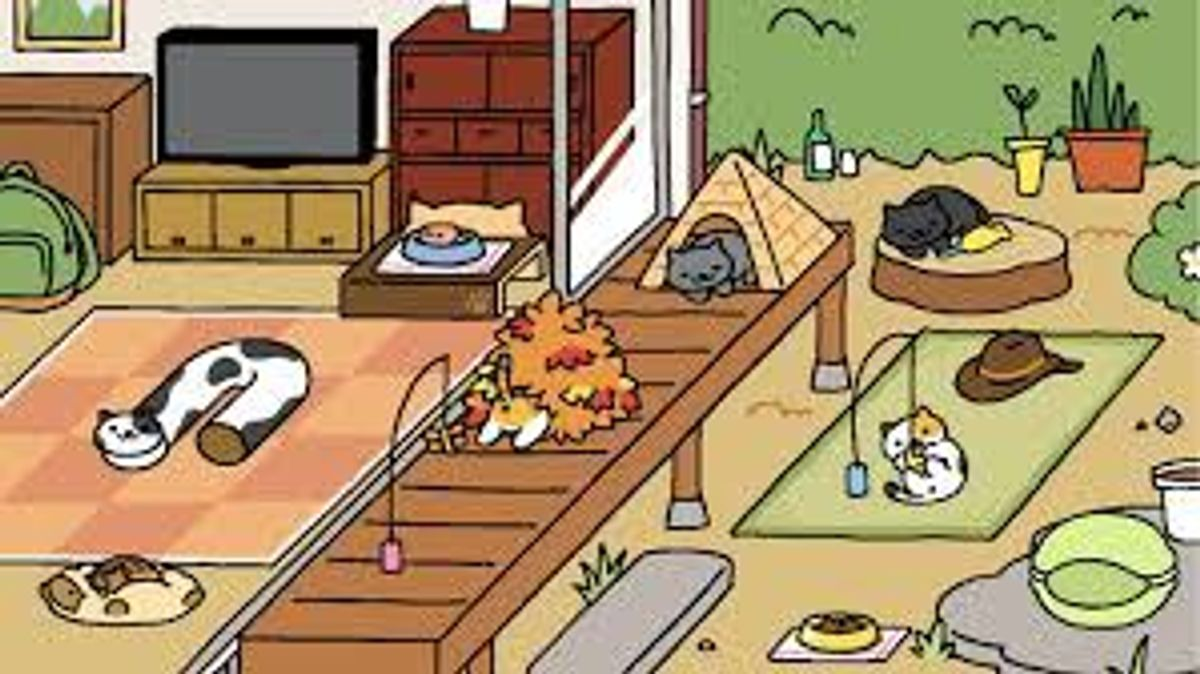 Neko Atsume: This Could Be Paradise