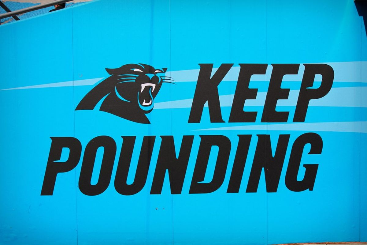 Confession: I Am a Bandwagon Panthers Fan