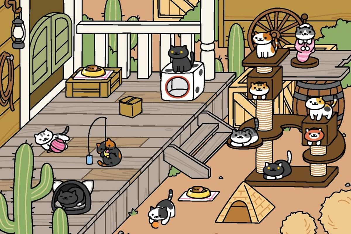 Where Did All These Cats Come From?