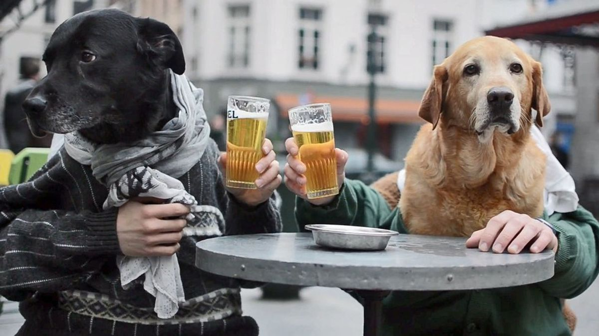 10 Times Dogs Were Actually Humans