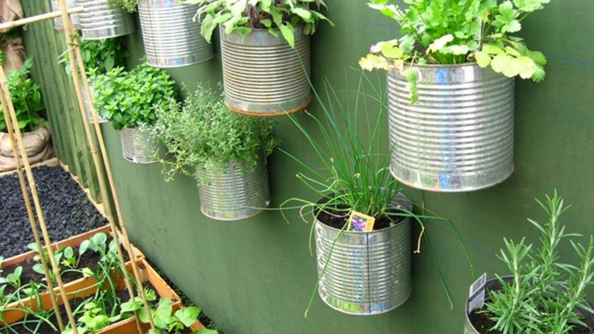 Easy, Colorful, And Fun Indoor Gardening Tips