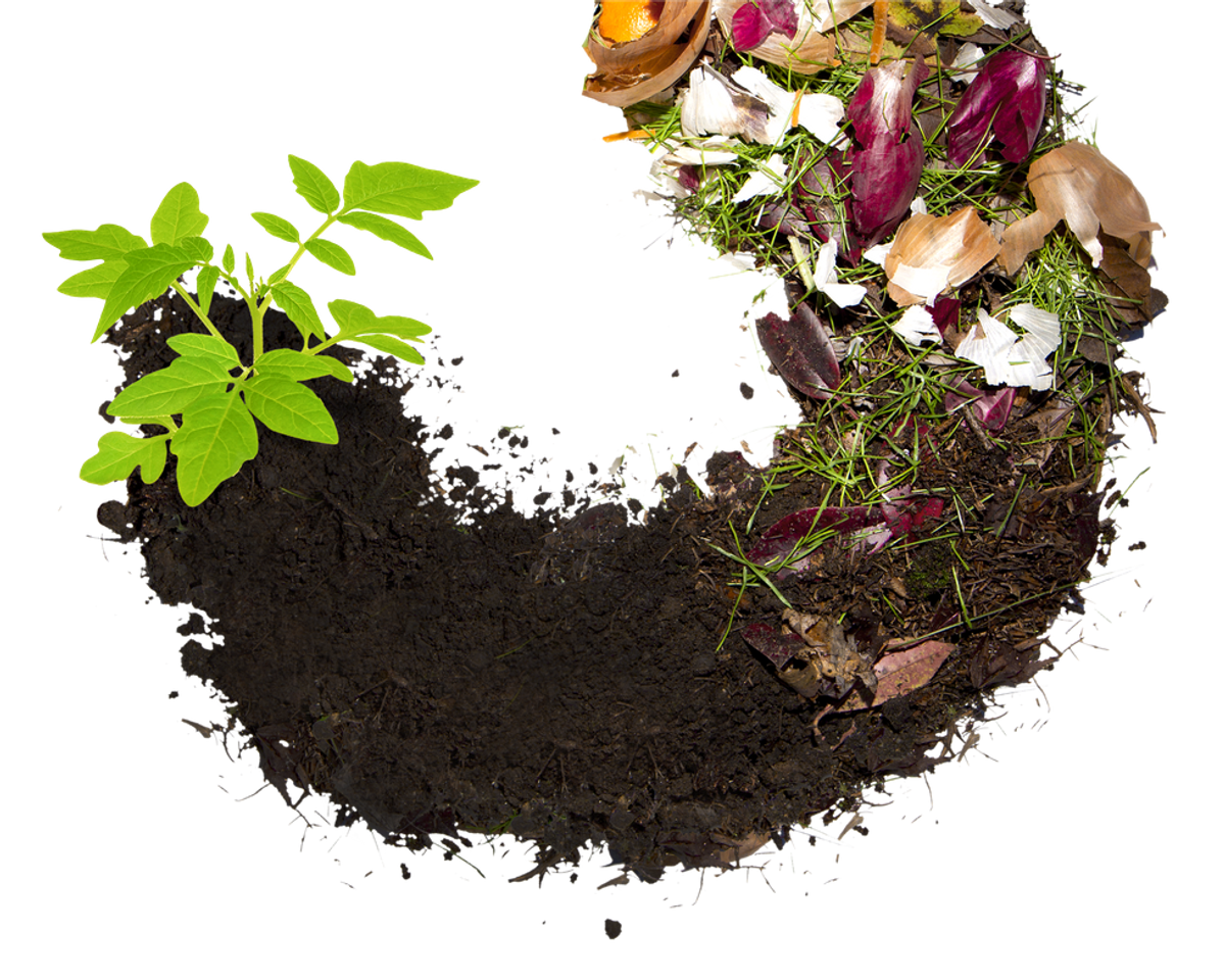 Panning for Black Gold: The Importance of Composting