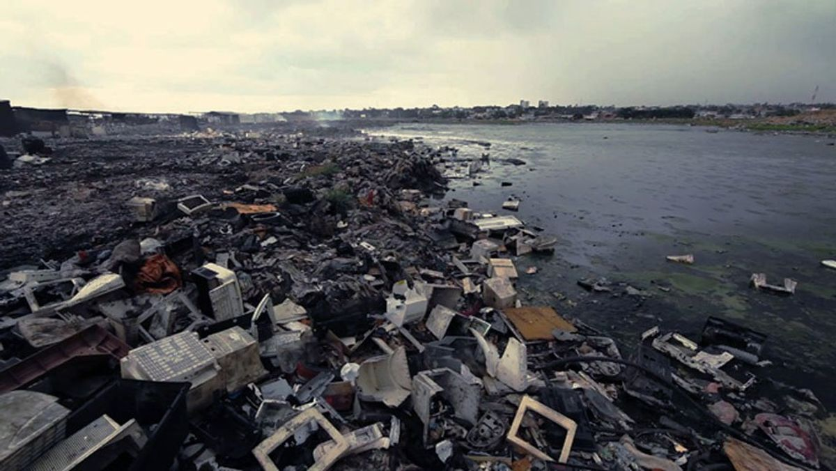 What We Can All Do For Our Environment