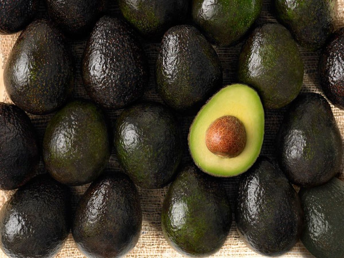 Avocado Lovers Rejoice: 10 Reasons For The Fruit's Wondrous Takeover