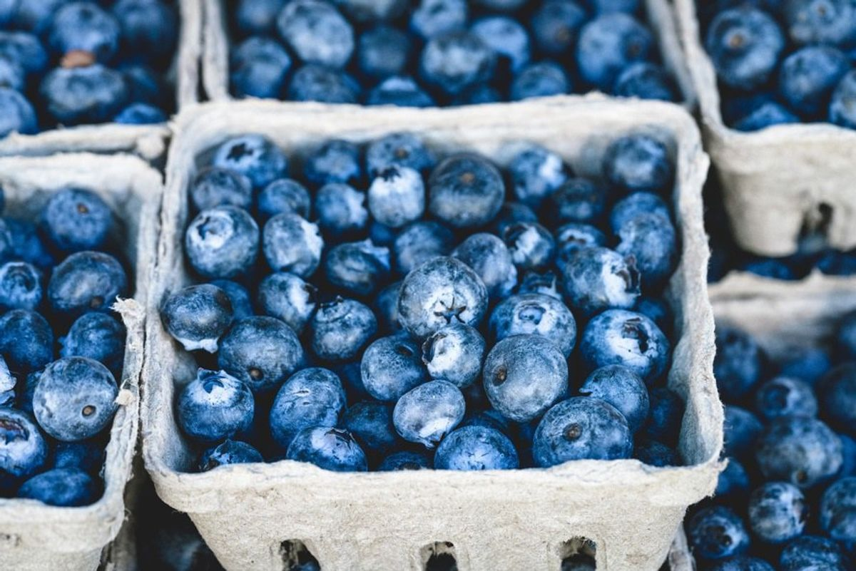 Eating Healthy In Summer 2016