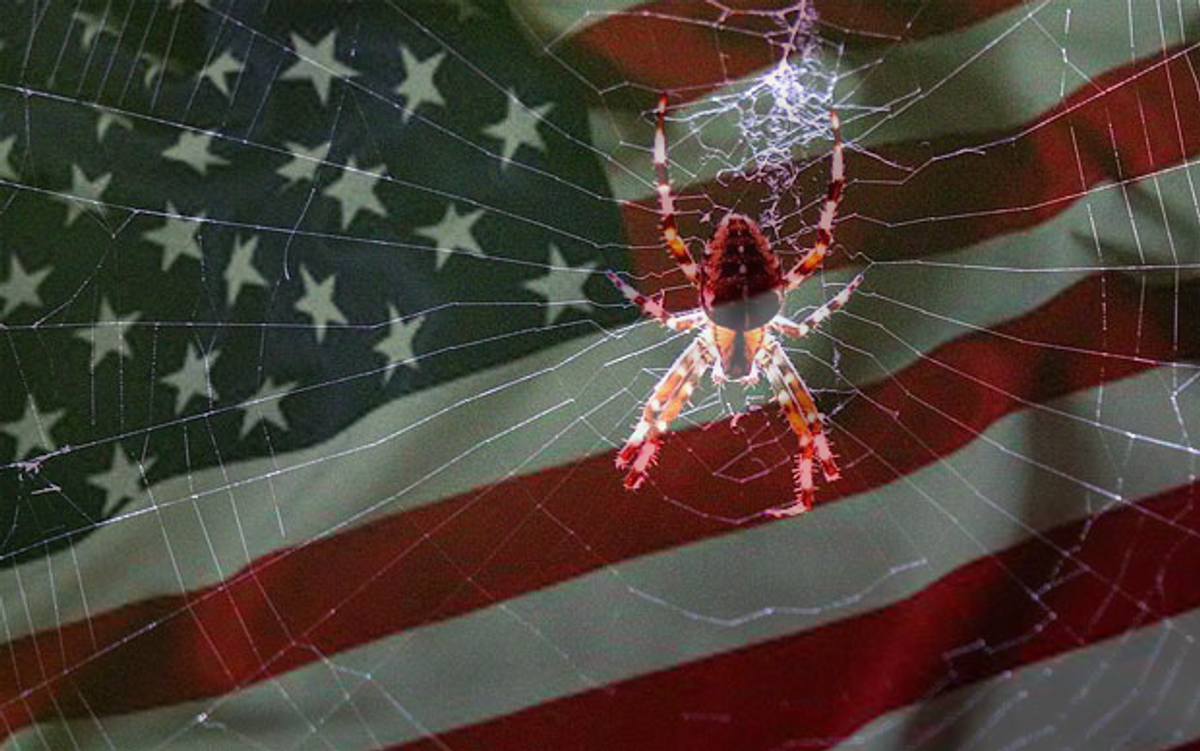 The Itsy-Bitsy Spider As A Deconstruction Of The American Dream