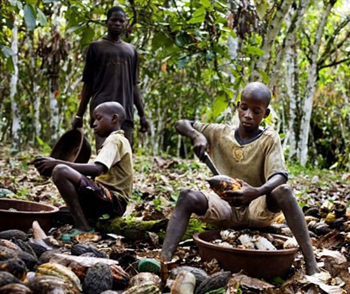 5 Major Chocolate Companies That Use Child Labor