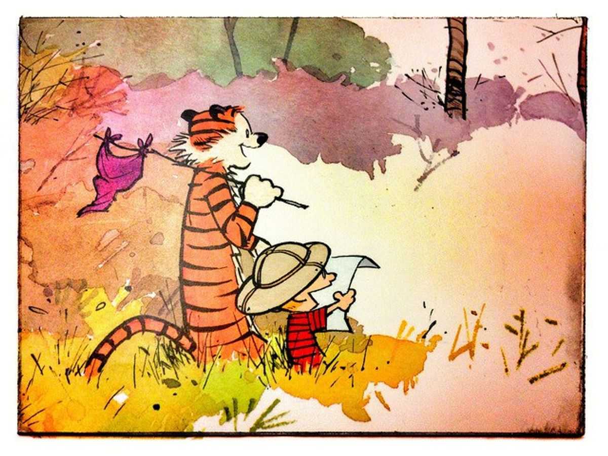 Calvin and Hobbes Are NOT Dead (They're Just Different)