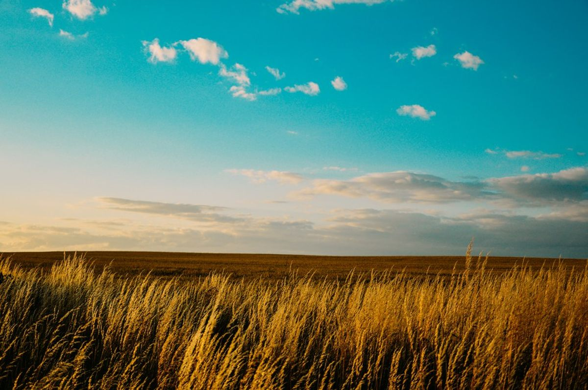5 Reasons Having An Agriculture Major Is Awesome