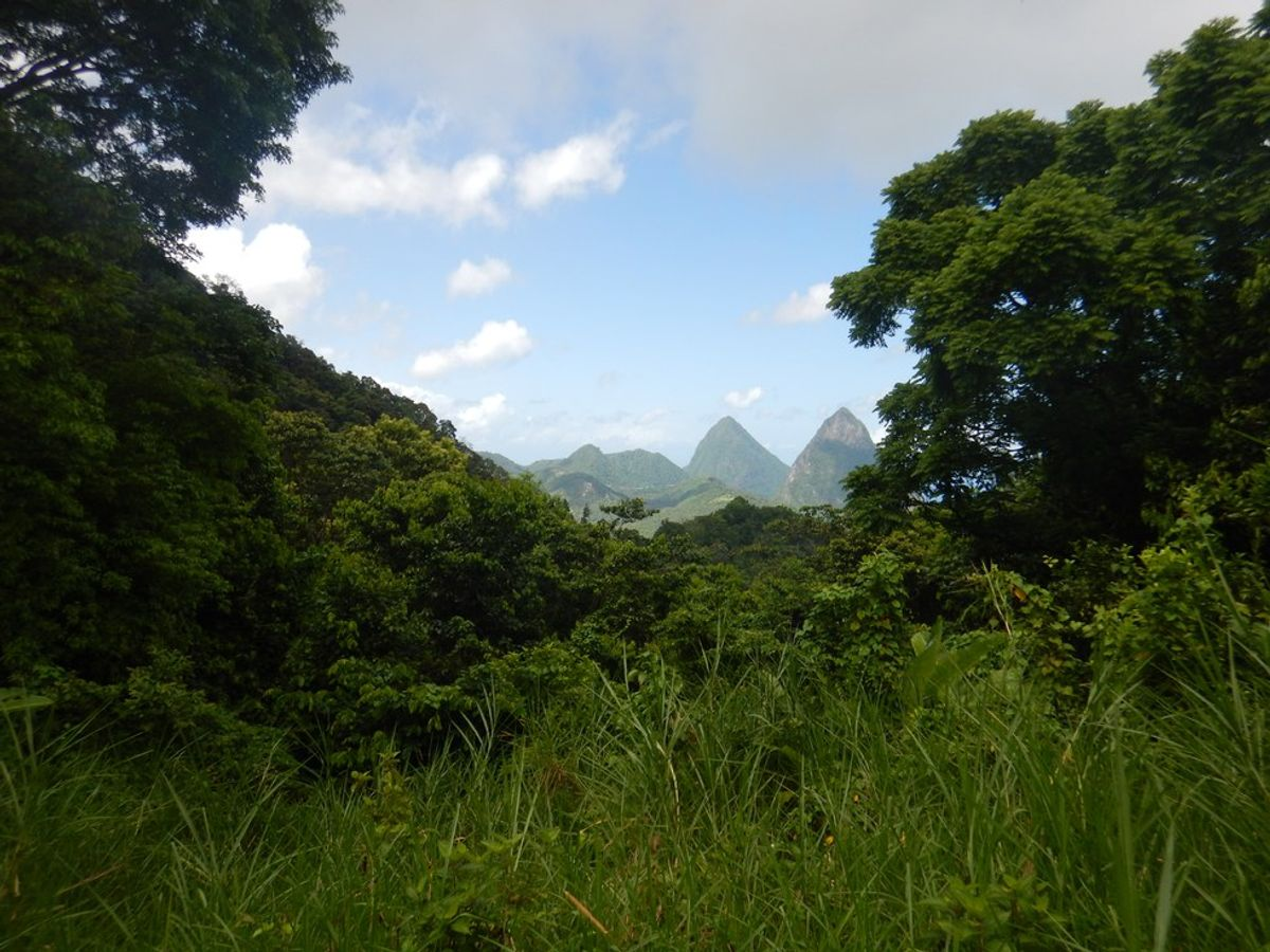 10 Reasons To Visit Saint Lucia