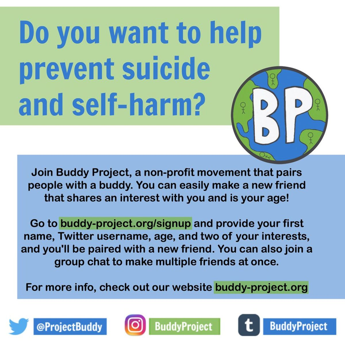 My Experience With The Buddy Project