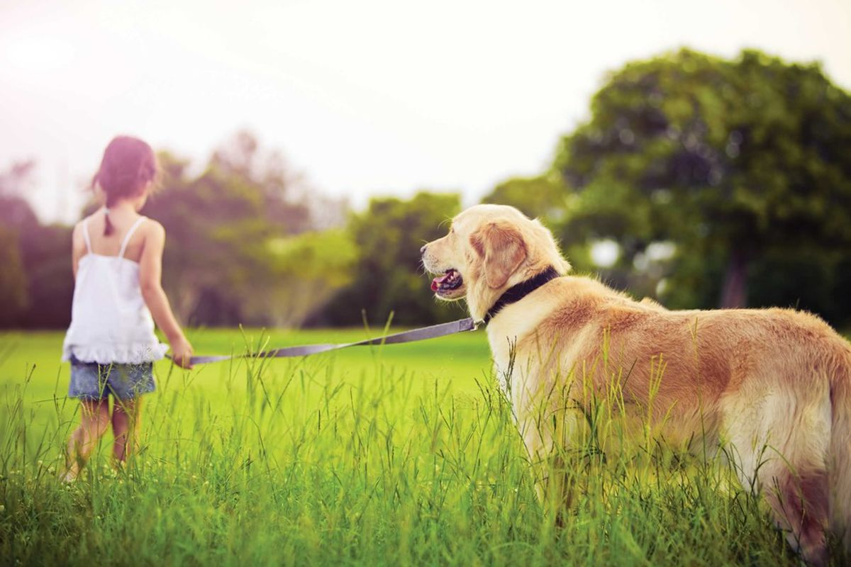An Open Letter To Everyone That Has Lost A Pet