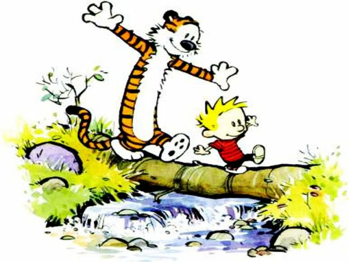 The Magical World Of Calvin And Hobbes
