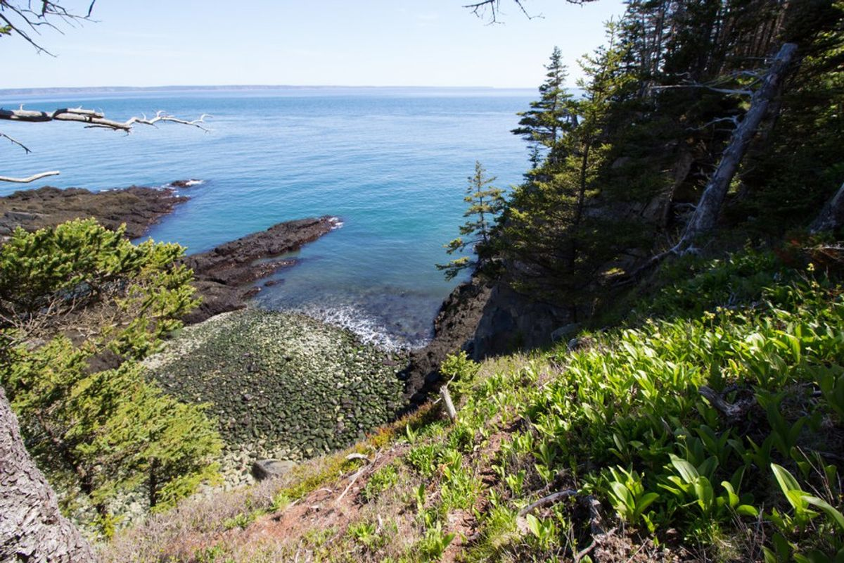 5 Quality Hikes In Downeast Maine