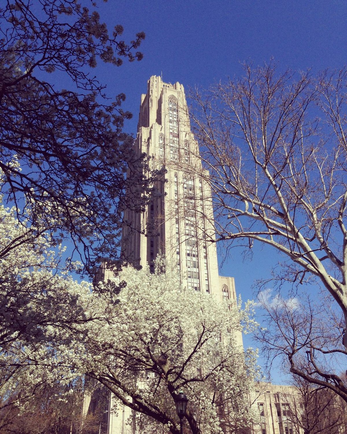 18 Things Every Pitt Student Wants This Year