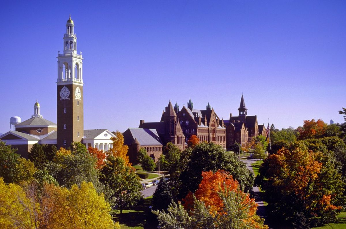 8 Reasons Why I Love UVM
