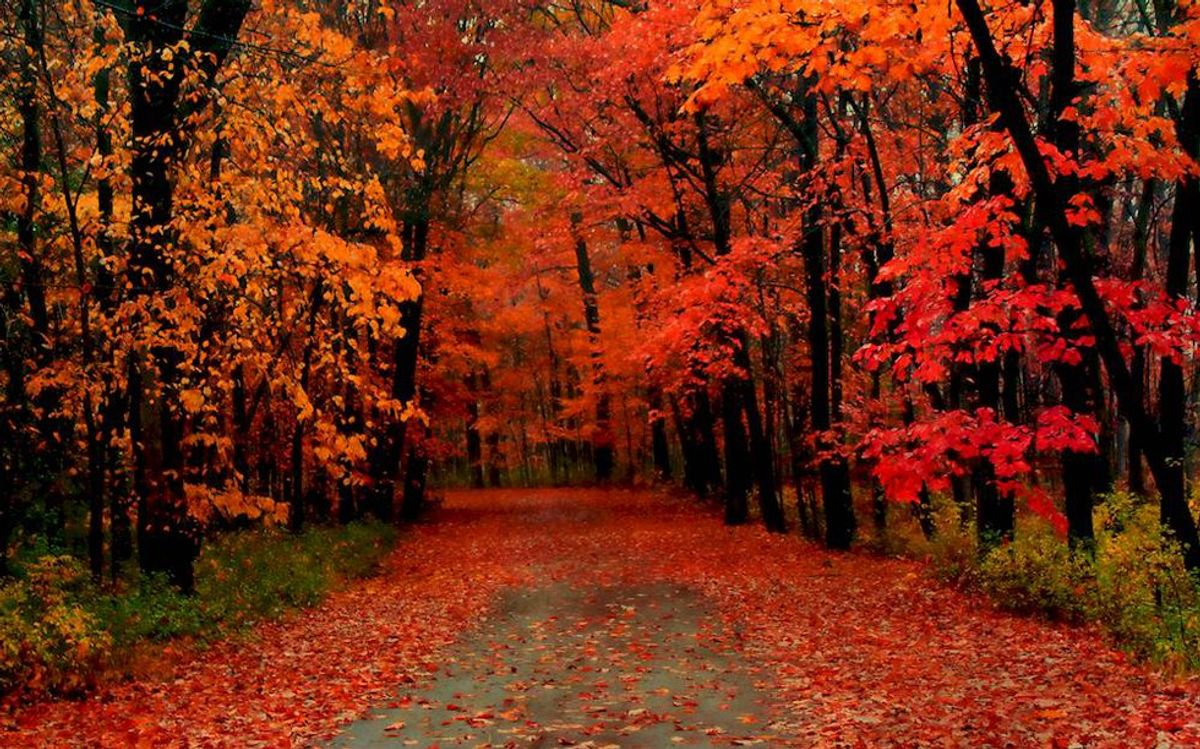 10 Reasons Why Fall Is The Best