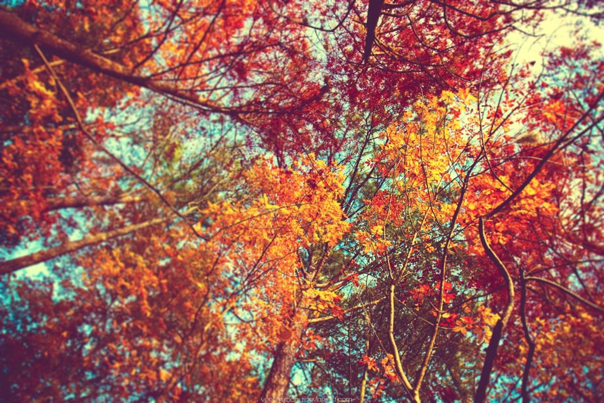 10 Signs That Fall Can't Come Fast Enough