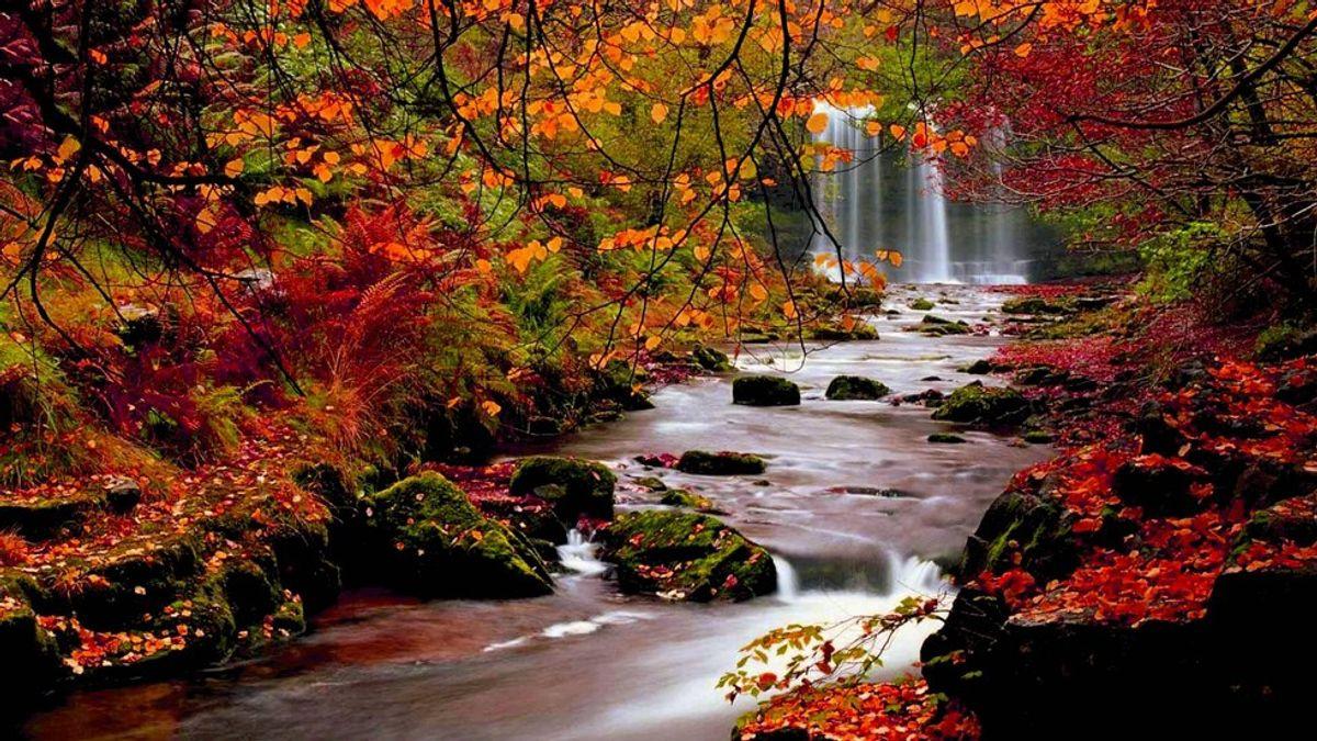 10 Ways To Fall Into The Autumn Spirit