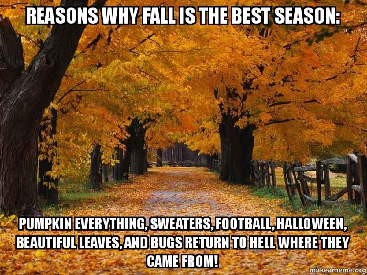 9 Reasons I'm Excited For Fall