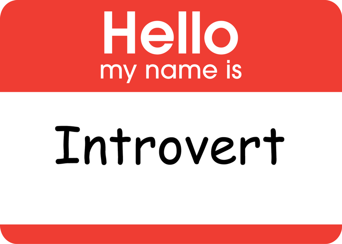 The Quiet Introvert