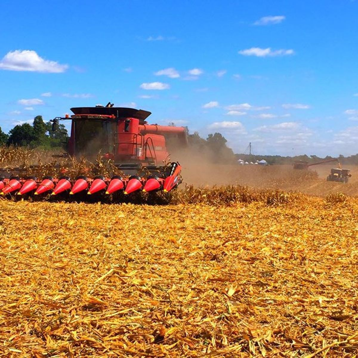 Sustainability in American Agriculture