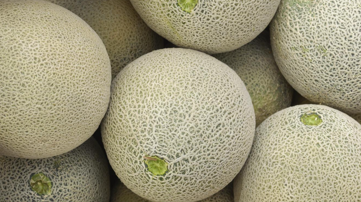 Why Cantaloupe And Honeydew Are The Worst Fruits The record label created in 2001 by the founders of new york's legendary bang. honeydew are the worst fruits