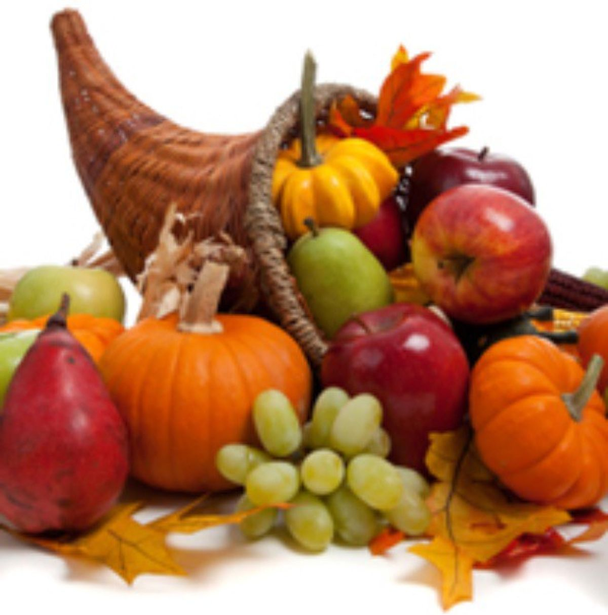 5 Great Fall Foods