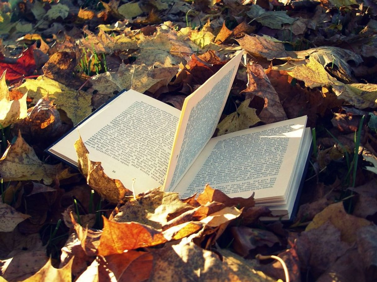10 Books To Read During These Cozy Autumn Days