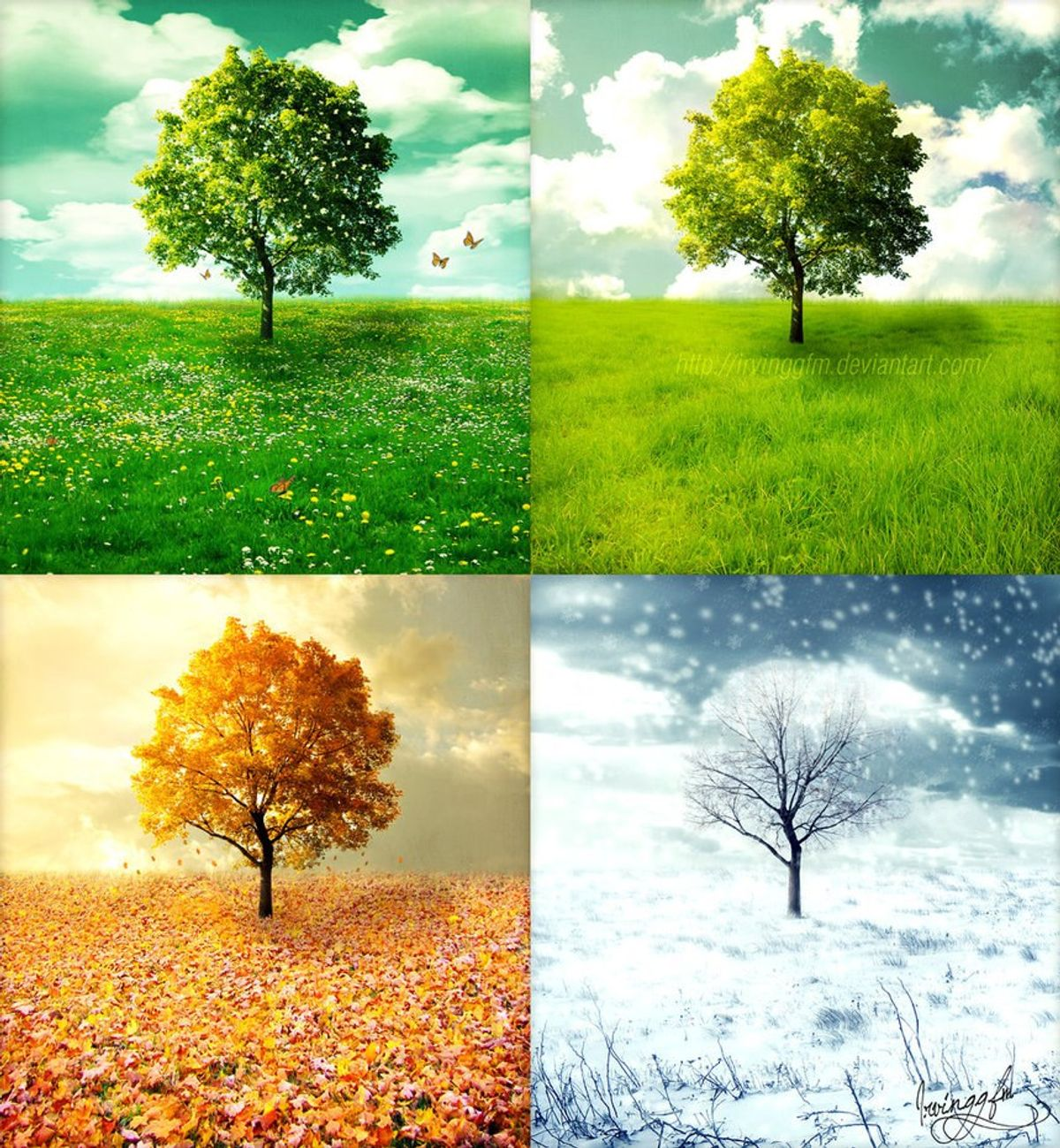 An Ode to the Seasons