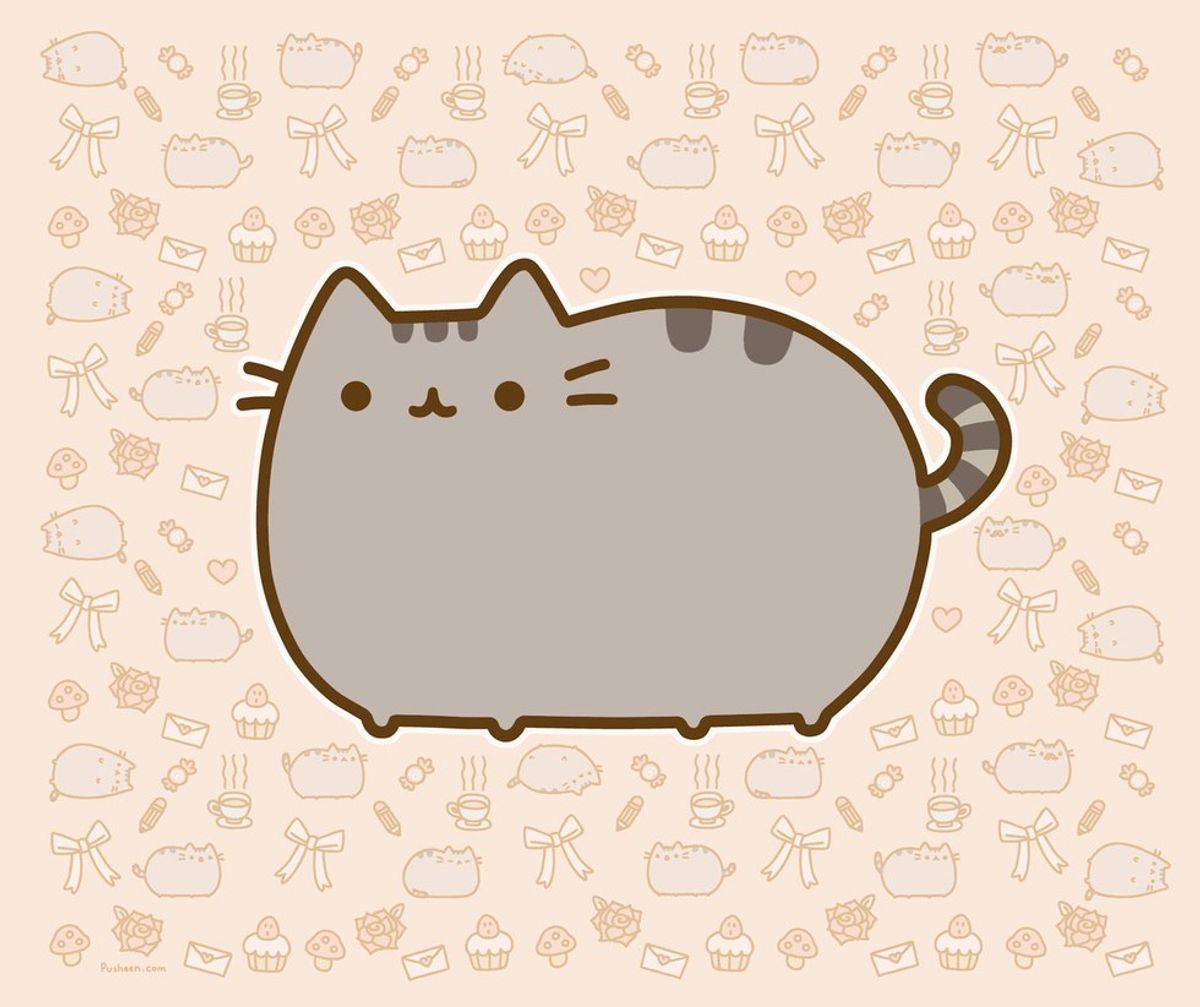 Make Your Own Pusheen Toy!