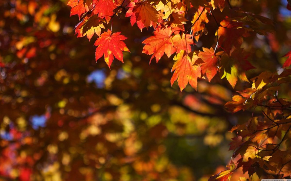 The 13 Best Things About October
