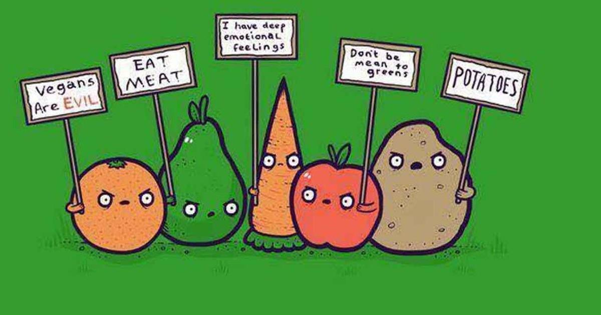 5 Reasons To Hate Vegans