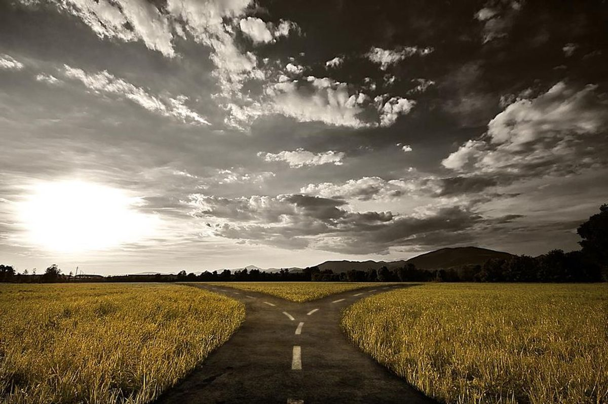 The Road You Should Take