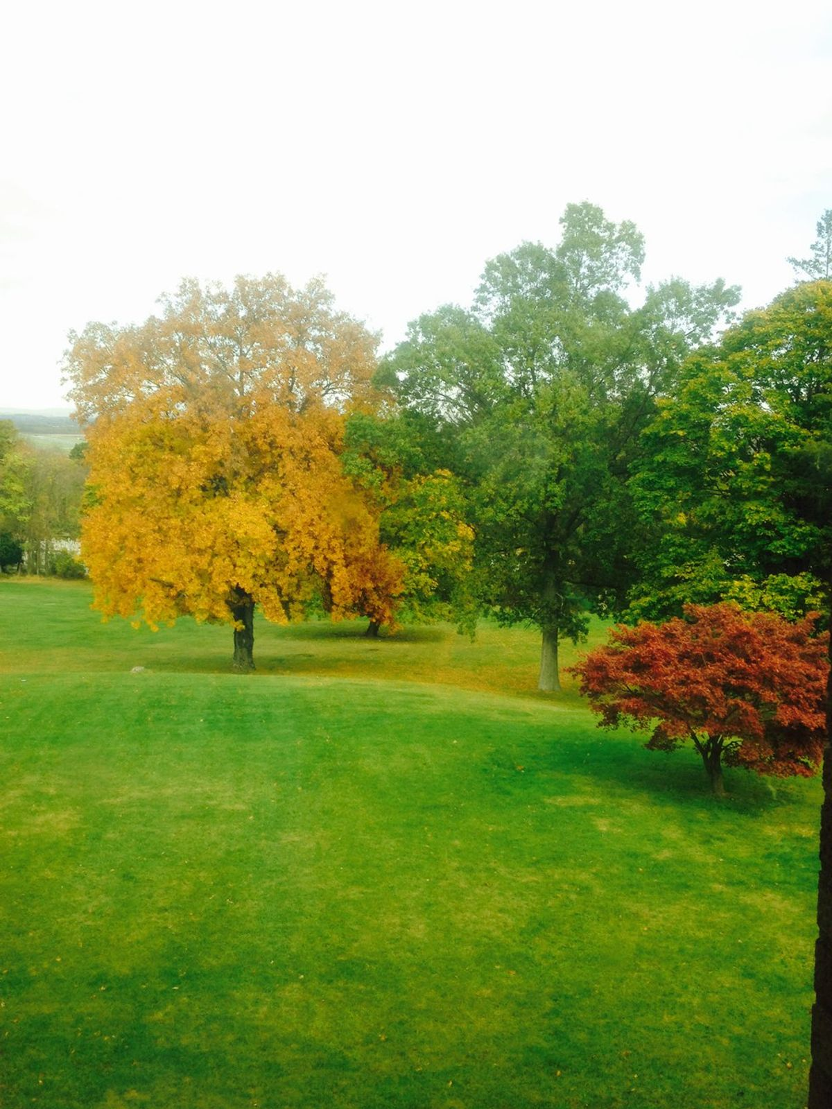 12 Reasons To Be Happy About The Fall And Winter Seasons