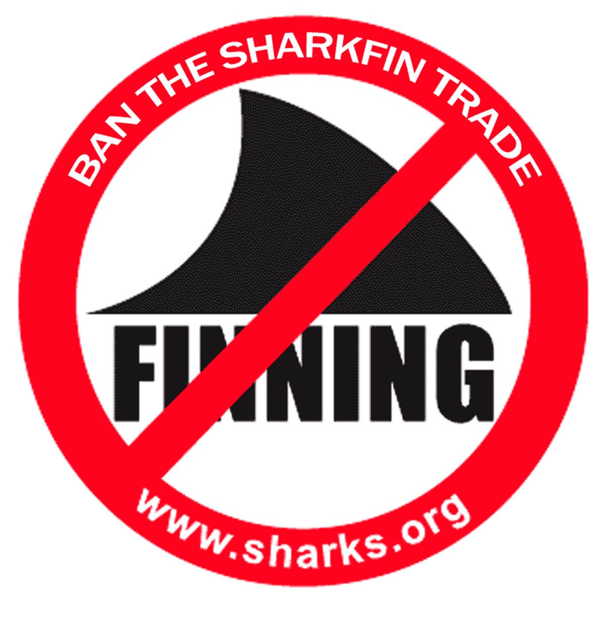 UPS Bans Shark Fin Shipments