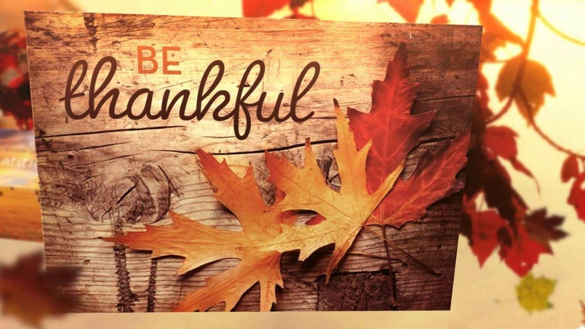16 Reasons I'm Thankful This Holiday Season