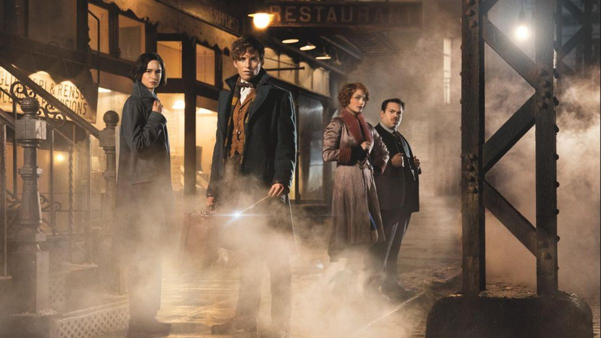 Fantastic Beasts And Where To Like Them