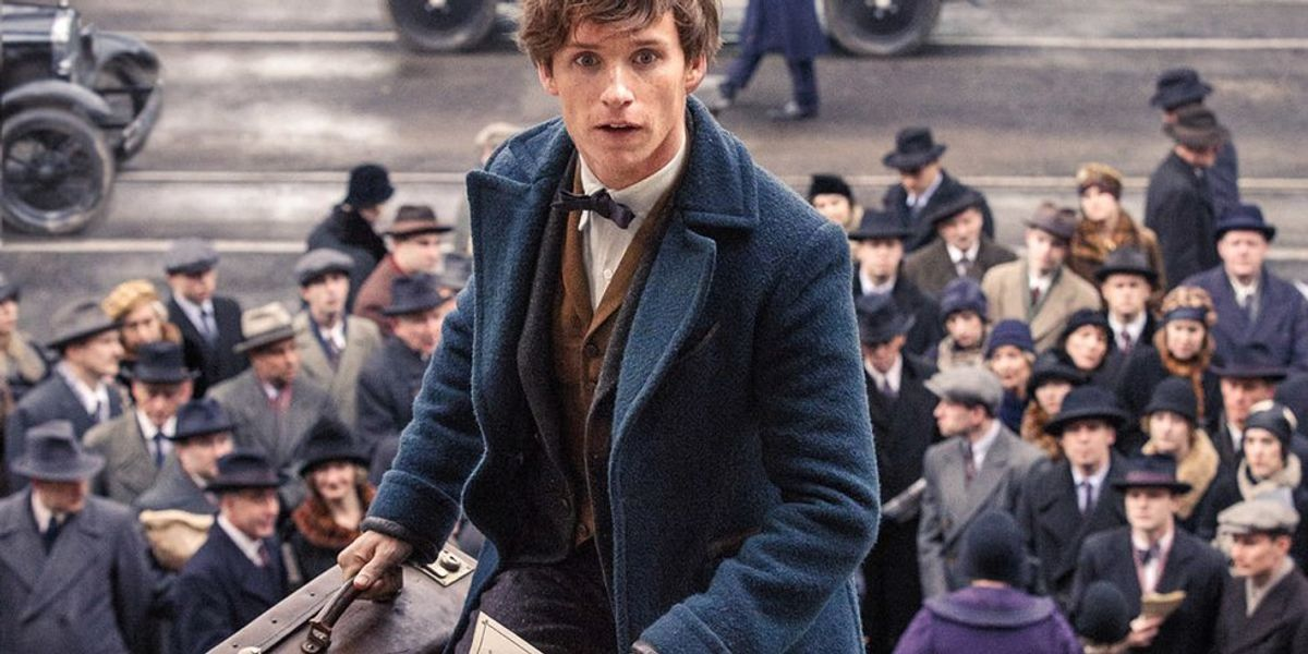 Why Newt Scamander Is The Protagonist Harry Potter Fans Needed