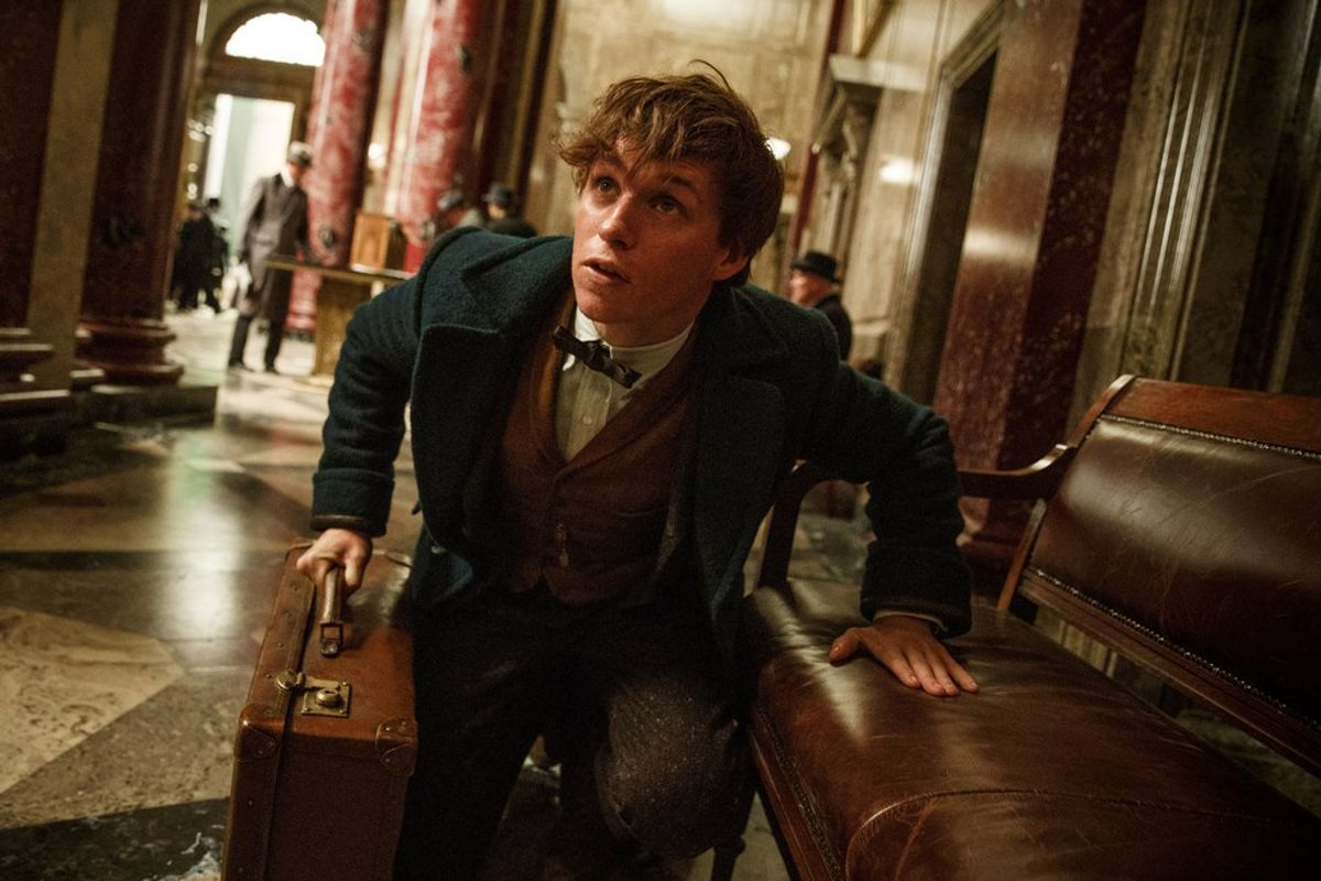 On Newt Scamander And Autistic Representation