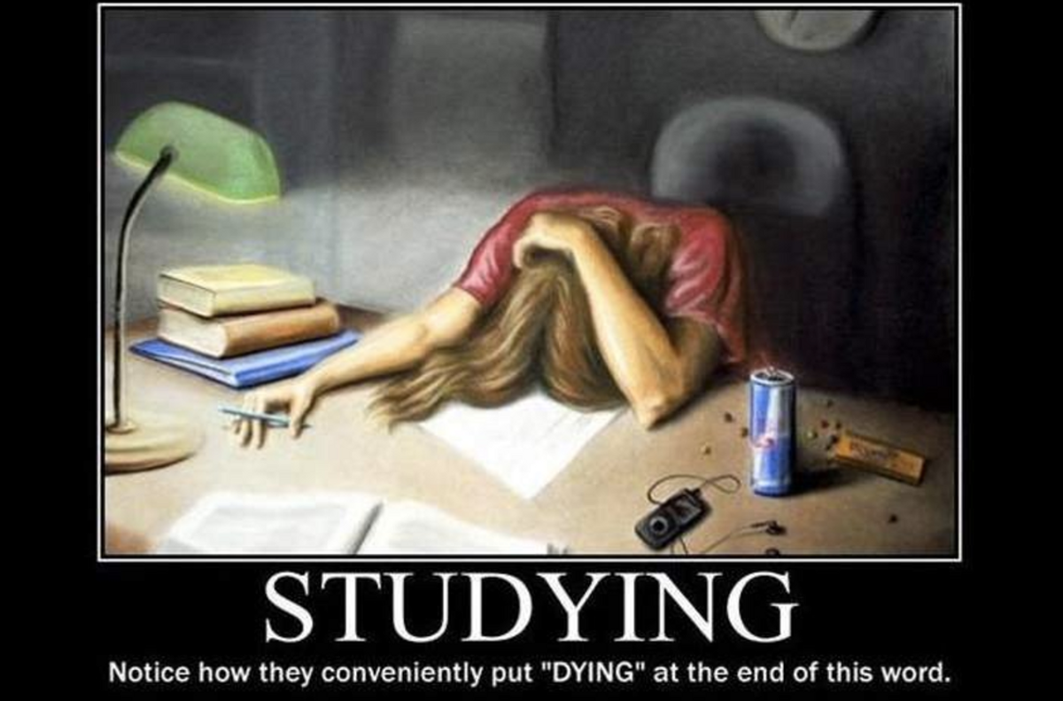 20 Reasons Why You Will Suceed On Your Finals