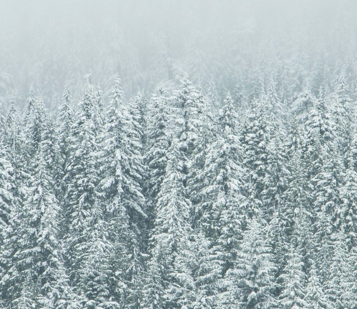 10 Songs For A Warm Winter