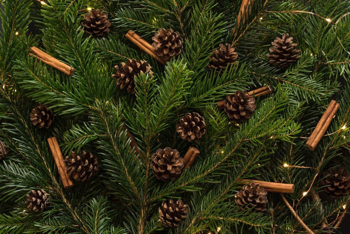 4 Christmas Traditions