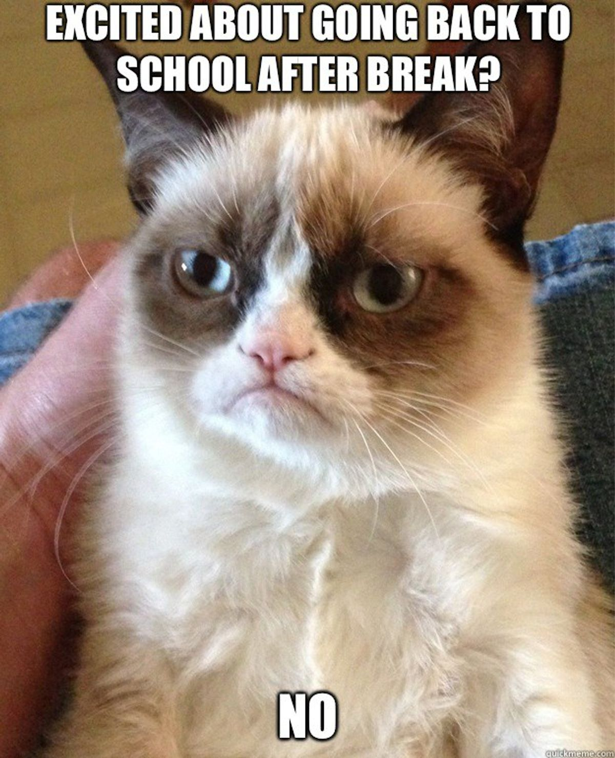 10 Memes That Accurately Describe A College Student During Break