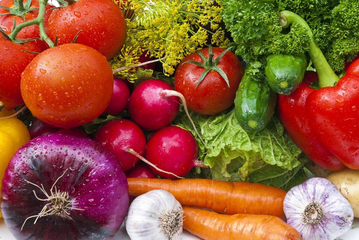 Vegan Best Friend Ingredients