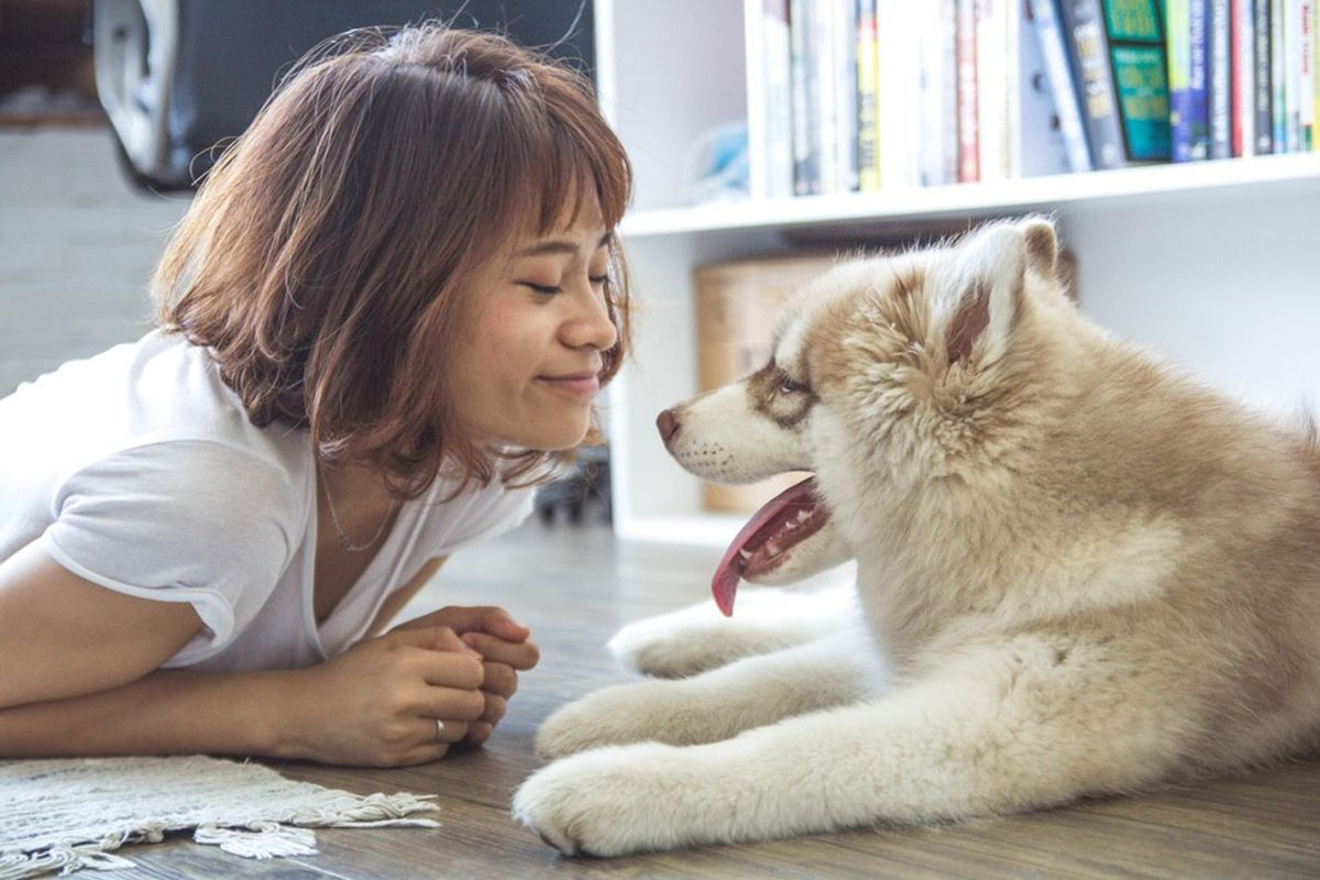 3 Things You Wish You'd Thought Of Before Getting A Pet In College