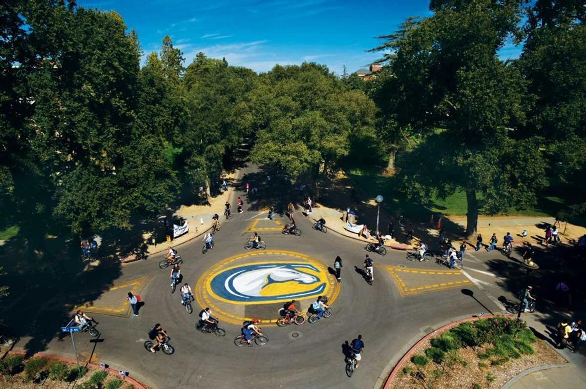 39 Questions I Have For UC Davis