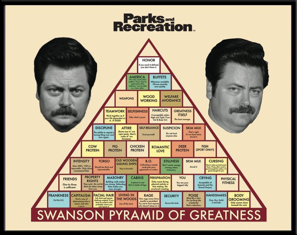 The Government as Told by Ron Swanson