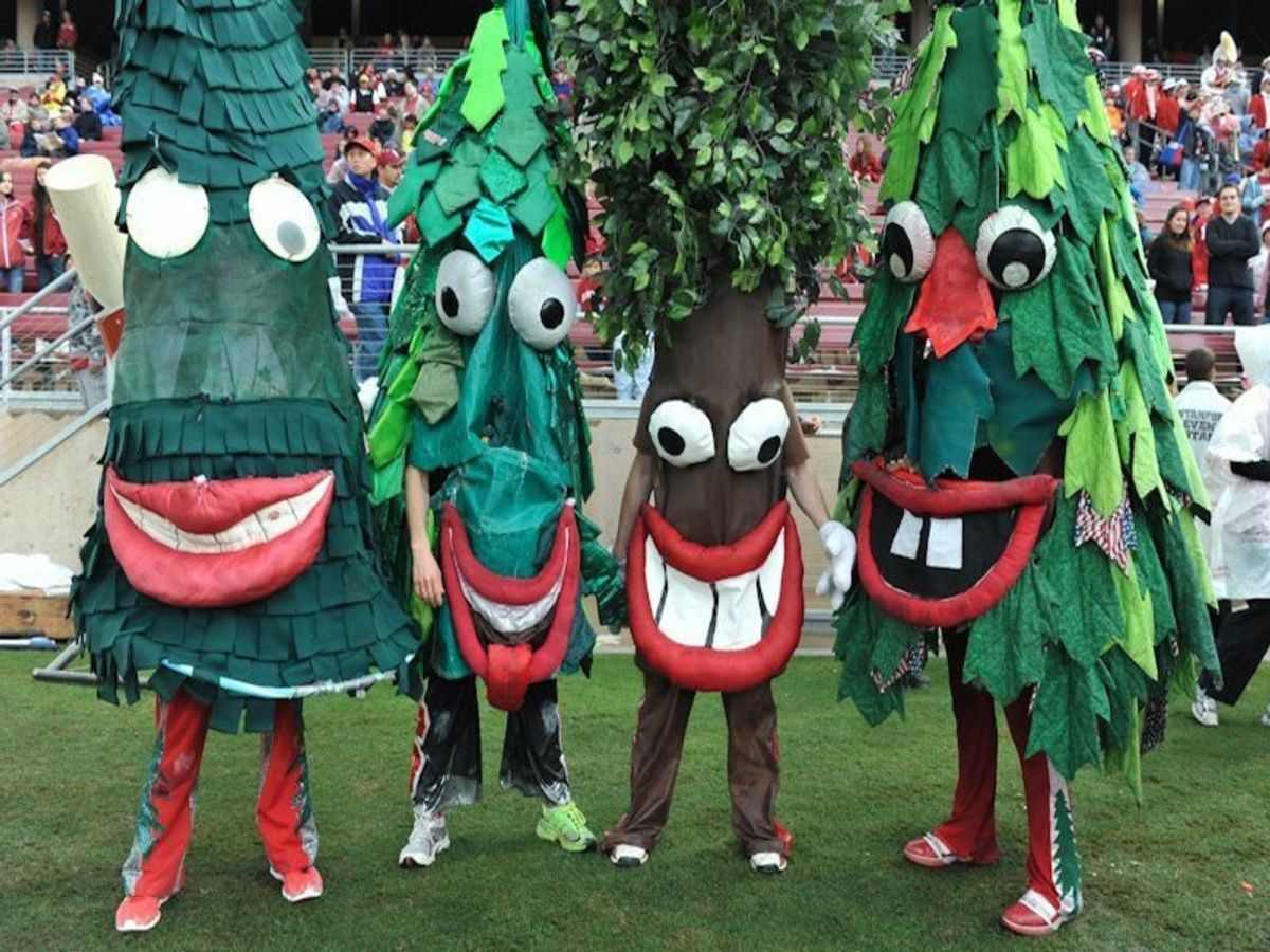 The Top 10 Universities With Unbelievably Weird Mascots